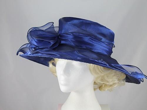 Wide Brimmed Occasion Hat