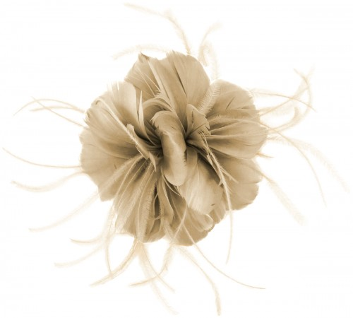 Failsworth Millinery Feather Fascinator in Fawn