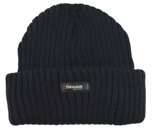 Thinsulate Beanie Chunky Ski Hat in Navy
