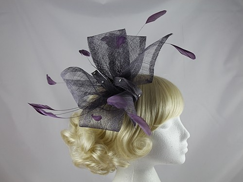 Purple Headpiece