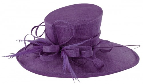 Max and Ellie Events Hat in Violet
