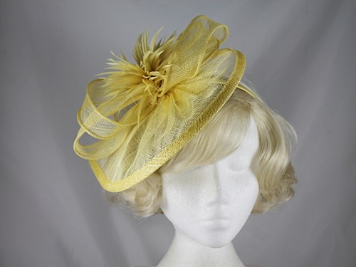 Elegance Collection Feathers and Veil Fascinator