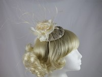 Maddox Rose Headpiece