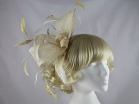 Cream and Gold Headpiece
