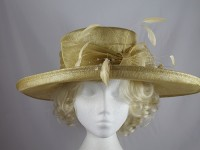 Hawkins Collection Wide Brim Occasion Hat