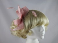 Light Pink Headpiece