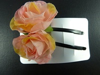Rosebud Slides