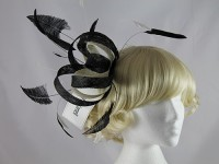 Sarah Cornell Black and Ivory Loops and Feathers