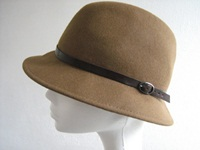 Occasional hat Brown Fedor