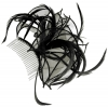 Aurora Collection Fascinator with Curled Fabric and Biots in Black