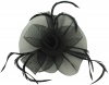 Aurora Collection Swirl & Biots Fascinator on clip in Black