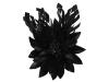 Failsworth Millinery Feather Flower Fascinator