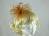 Elegance Collection Crin Fascinator with Beads
