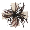 Aurora Collection Biots and Beads Fascinator in Brown