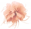 Failsworth Millinery Feather Fascinator in Candy