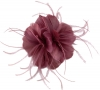 Failsworth Millinery Feather Fascinator in Cassis