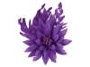 Failsworth Millinery Feather Flower Fascinator in Cassis