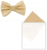 Max and Ellie Mens Bow Tie and Pocket Square Set in Chalk