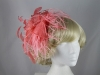 Gwyther Snoxells Feathers and Sinamay Fascinator
