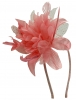 Aurora Collection Flower Aliceband Fascinator in Dark Pink