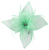 Failsworth Millinery Diamante Organza Fascinator in Dawn