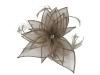 Failsworth Millinery Diamante Organza Fascinator in Fawn
