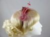 Feather and Net Fascinator in Pink