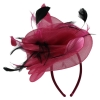 Elegance Collection Crin Headpiece