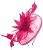 Elegance Collection Events Headpiece in Fuchsia