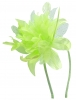 Aurora Collection Flower Aliceband Fascinator in Green