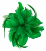 Aurora Collection Flower with Biots Fascinator in Green