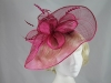 Elegance Collection Events Headpiece in Hot Pink