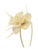 Elegance Collection Diamante Flower Fascinator in Ivory