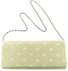 Elegance Collection Evening Bag in Ivory