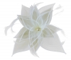 Failsworth Millinery Diamante Organza Fascinator in Ivory