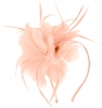 Aurora Collection Feather Aliceband Fascinator in Light Pink