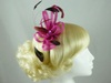 Fascinator with Loops and Gem in Pink