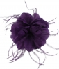 Failsworth Millinery Feather Fascinator in Majesty
