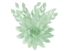 Failsworth Millinery Feather Flower Fascinator in Mist