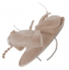 Failsworth Millinery Disc in Nude
