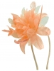 Aurora Collection Flower Aliceband Fascinator in Orange