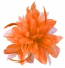 Aurora Collection Flower with Biots Fascinator in Orange