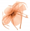 Aurora Collection Swirl & Biots Fascinator on aliceband in Peach