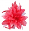 Aurora Collection Flower with Biots Fascinator in Pink