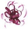 Hawkins Collection Loops Fascinator in Pink