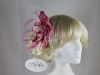 Hawkins Collection Loops Fascinator in Pink