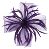 Aurora Collection Biots and Beads Fascinator in Purple