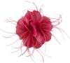 Failsworth Millinery Feather Fascinator in Raspberry