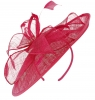 Failsworth Millinery Sinamay Leaves Disc in Raspberry