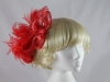 Red Feathers Headpiece